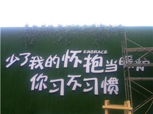 南京仿真水泥榕树价格,南京仿真水泥榕树哪家有