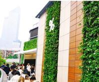 南京仿真水泥榕树价格,南京庭院假山设计施工哪家有